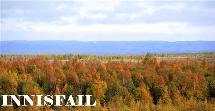 Autumn colours in the Boreal forest near Slave Lake in northern Alberta, Canada.