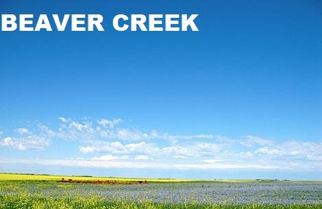 beaver creek2