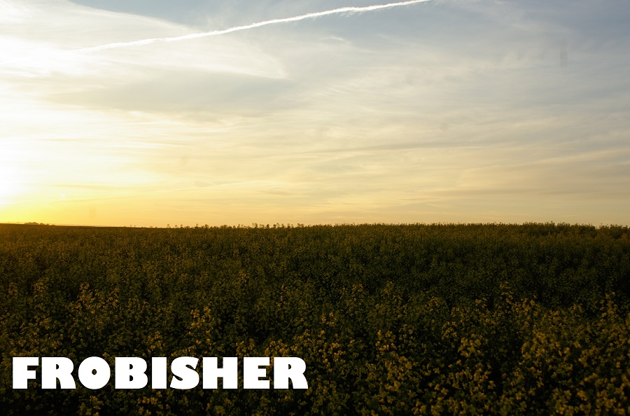 frobisher2