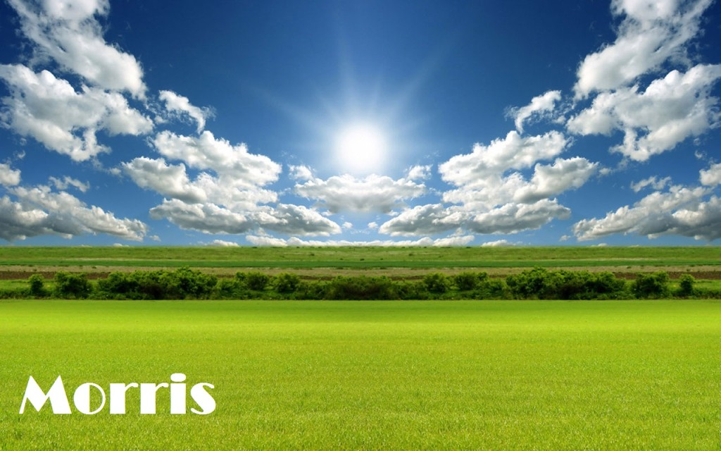Morris2