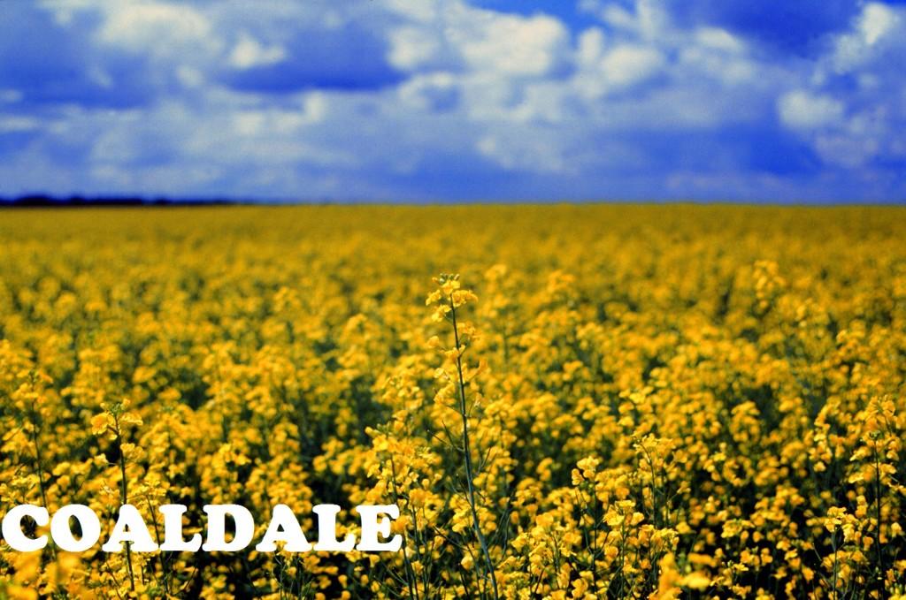 coaldale2