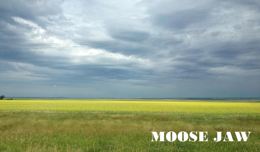 moose jaw2